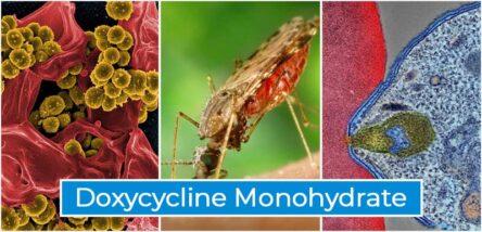 Doxycycline Monohydrate